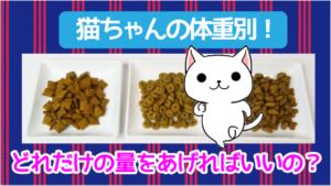 猫ちゃんの体重別!どれだけの量をあげればいいの?